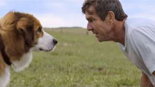 A Dog's Purpose premiere cancelled amid animal rights concerns