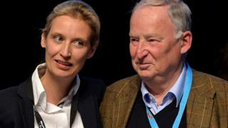 Germany AfD: Right-wing party picks election leaders